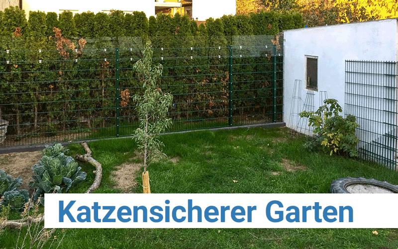 Katzensicherer Garten Mit Plexiglas Plattenzuschnitt24de Blog